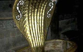 Змея как символ. Словарь мифических змеев