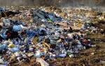 К чему сниться мусорная свалка. Магия чисел