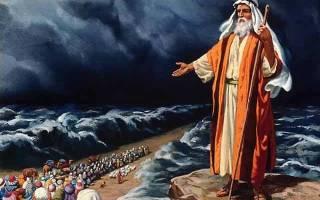 Кто такой библейский пророк. Большая христианская библиотека