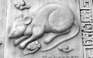 Восточный гороскоп на год для крыс.