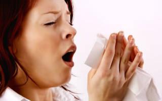 Чихание в среду с 13 14. Приметы на чихание