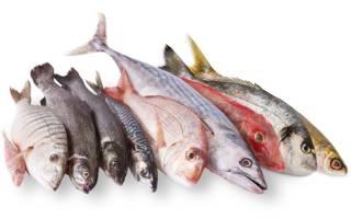 Можно ли есть рыбу в Великий пост: питание по дням. Рыба в Великий пост: можно ли кушать и когда