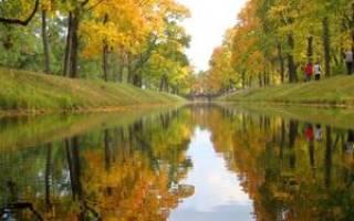 Народные приметы октября. Православные традиции дня