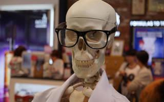 К чему снится скелет человека. Сонник скелет, к чему снится скелет, во сне скелет