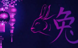 Гороскоп на июль кот кролик. Как будут складываться отношения с деньгами у родившихся под знаком Кролика
