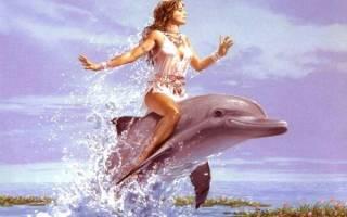 К чему снятся дельфины для женщин. Приснился дельфин: что это значит? Действия во сне: видеть вдалеке в море, плавать вместе, кататься верхом, целовать или гладить