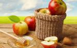 Когда праздник спас. Три Спаса в августе: Медовый, Яблочный, Ореховый — история, традиции, приметы