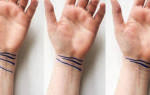 Что означает 3 линии на запястье. Линии на запястье — браслеты или рассцеты