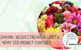 Сонник миллера цветы искусственные в могиле. Что значит видеть во сне искусственные цветы