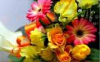 Покупать красивые цветы во сне. Цветы живые покупать