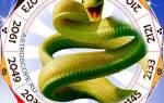 Год собаки предсказания рожденным в змеи. Совместимость змеи и собаки в китайском гороскопе