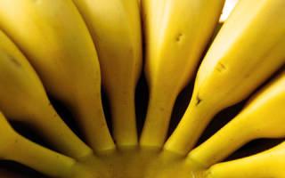 Видеть во сне бананы. К чему снятся бананы по соннику
