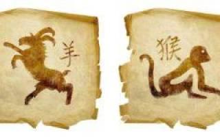 Совместимость деревянной обезьяны и водяной козы. Совместимость Козы (Овцы) и Обезьяны: меланхолик против сангвиника